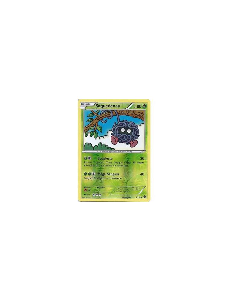 FR Pokémon Carte XY11 1/114 Saquedeneu REVERSE