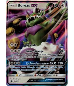 [FR] Pokémon Carte Promo SM134 Boréas GX